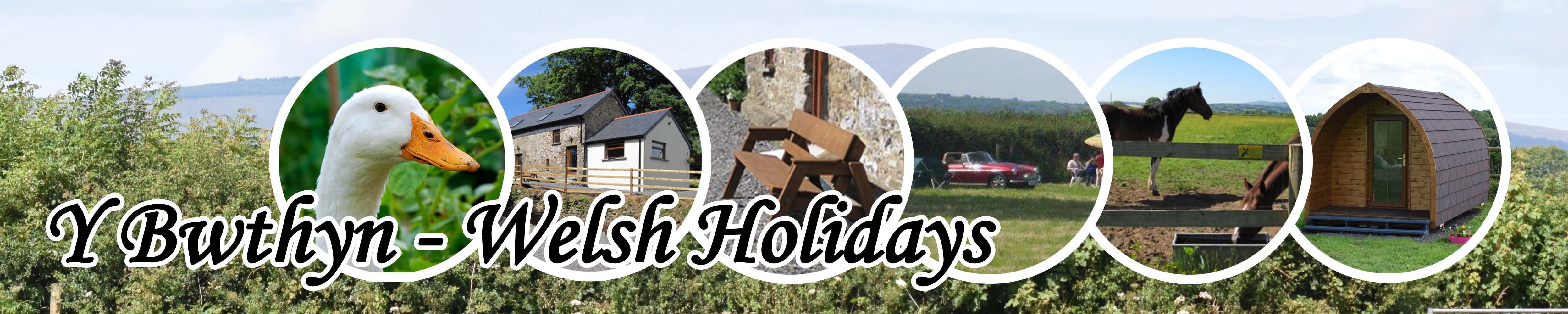 Y-Bwthyn Holiday Cottage, Camping and Glamping Logo